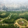 The first edition of the World Forum on Urban Forests kicks off