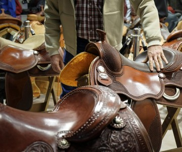Opens Fieracavalli. More than 200 events including races, shows and conferences